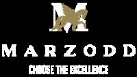 Logo_Marzodd_white_Tavola disegno 1