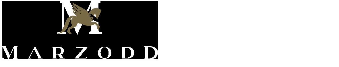Logo_bianco_MZD